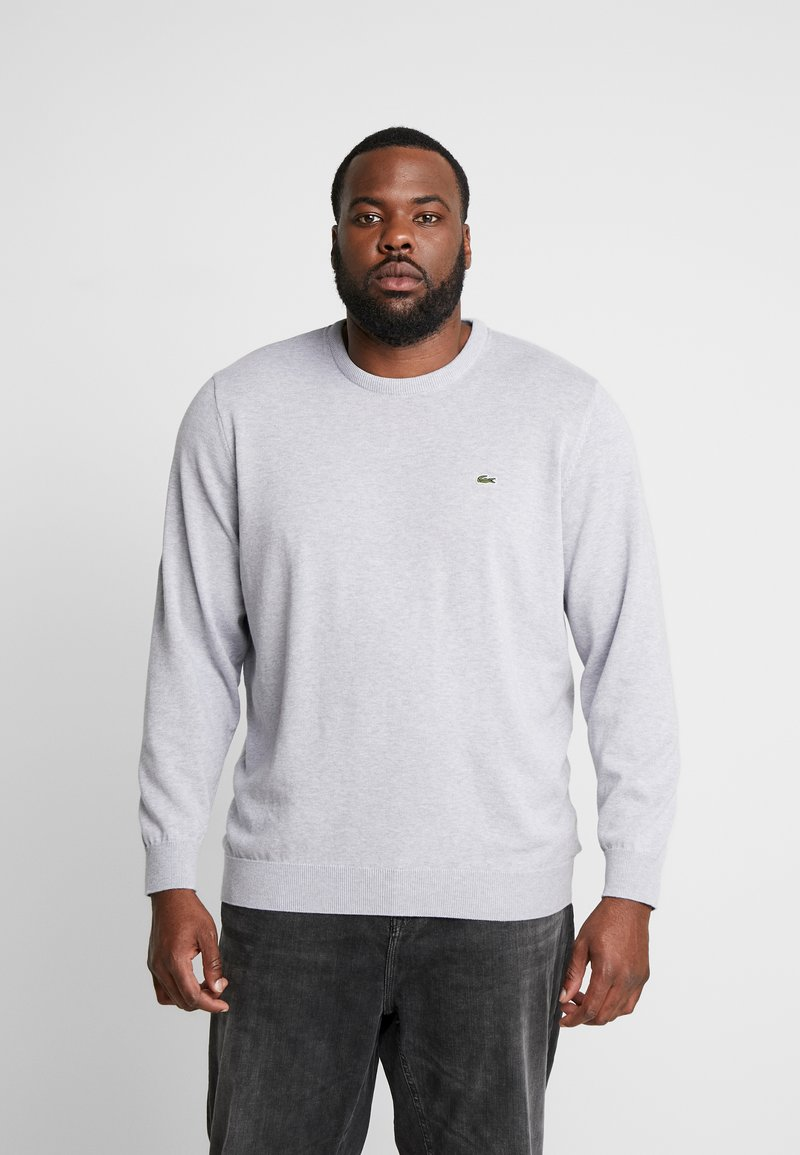 Lacoste - Jumper - pluvier chine/farine arge