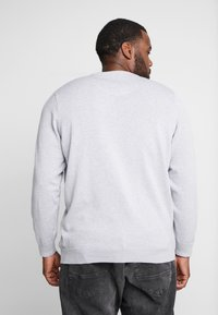 Lacoste - Jumper - pluvier chine/farine arge - 2