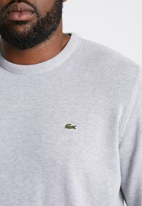 Lacoste - Jumper - pluvier chine/farine arge - 5