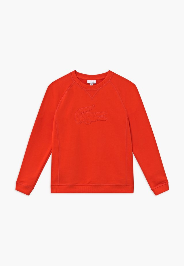 Sweater - corrida