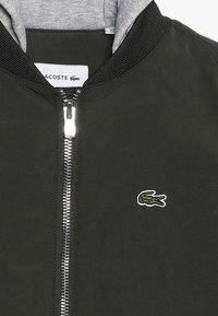 Lacoste - Winterjas - baobab/silver chine - 5
