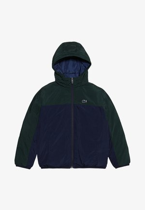 BLOUSON - Winterjas - sinople/navy blue