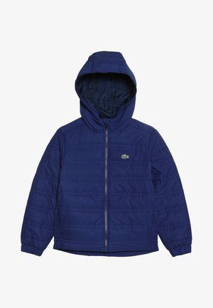 WINTER JACKET - Winterjas - capitaine