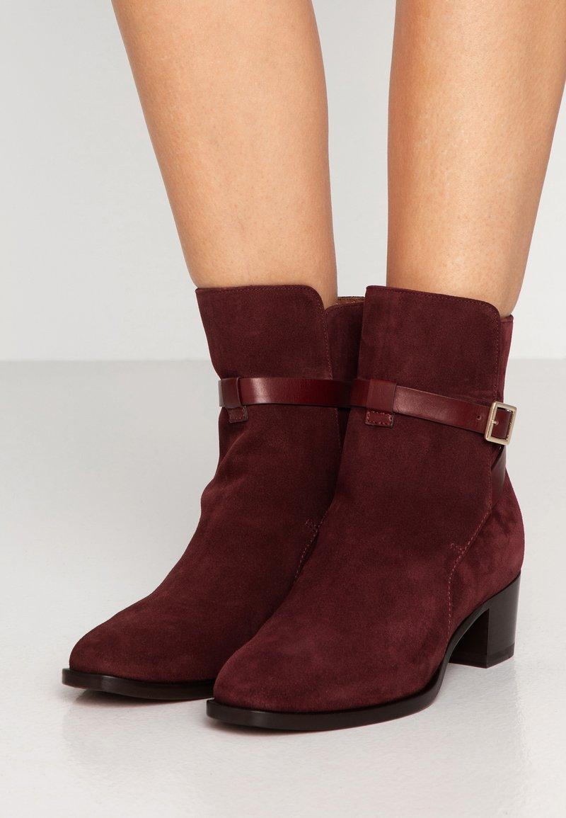 L'Autre Chose - Classic ankle boots - bordeaux