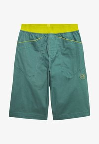La Sportiva - FLATANGER SHORT  - Sports shorts - pine/kiwi - 5