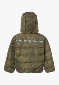 Lemon Beret - SMALL BOYS JACKET - Winter jacket - kaki - 1
