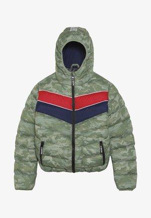 TEEN BOYS JACKET - Zimní bunda - green