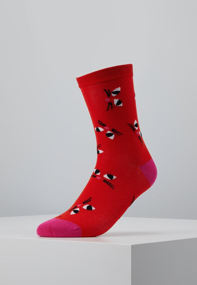KOOKY CAT SOCKS - Sokker - orange