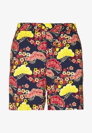 FRONT - Shorts - asian sky