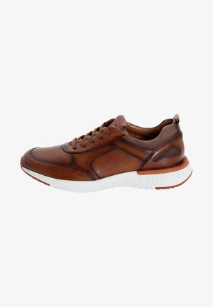 BAXTER - Trainers - brown