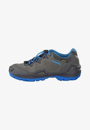 DIEGO GTX - Hikingskor - grey/blue