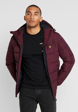 WADDED JACKET - Winter jacket - burgundy