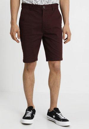 RAISIN CHINO - Shorts - burgundy