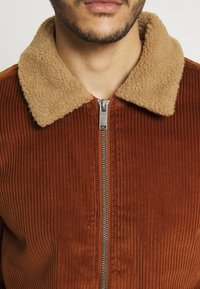 Burton Menswear London - COLLAR - Lett jakke - brown - 4