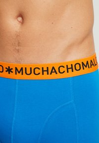 MUCHACHOMALO - SOLID 3 PACK - Shorty - grey/royal blue/orange - 4