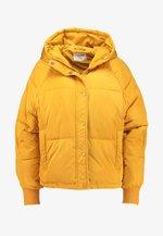 FILU JACKET - Winter jacket - golden yellow