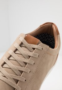 Madden by Steve Madden - BLITTO - Tenisky - taupe - 5
