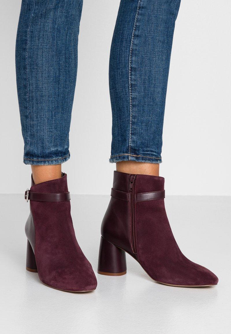 mint&berry - Kotníkové boty - bordeaux