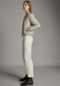Massimo Dutti - MIT METALLICVERZIERUNG - Winter jacket - beige - 5