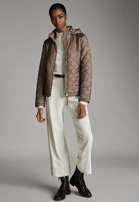 Massimo Dutti - MIT ABNEHMBARER KAPUZE - Winter jacket - brown - 1