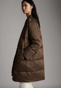 Massimo Dutti - GESTEPPTE DAUNEN-BOMBERJACKE 06715900 - Winter coat - brown - 3