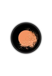MAC - STUDIO FIX PERFECTING POWDER - Poudre - medium deep - 1
