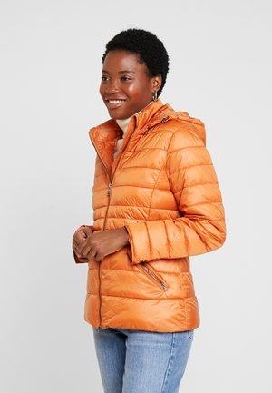 JACKET - Jas - pumpkin orange