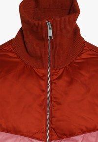 Molo - HEDIA - Zimní bunda - rooibos - 2