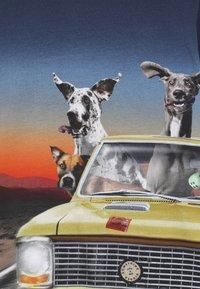 Molo - REZ - Topper langermet - canine cruising - 3