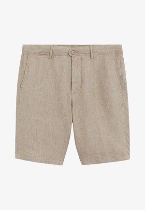 CARP - Shorts - mittelbraun