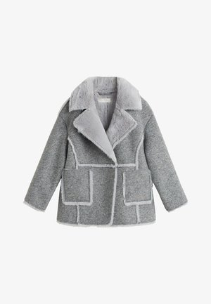 MALU - Winter jacket - gray