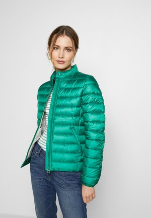 NO DOWN SLOW DOWN - Winter jacket - spring forest
