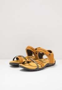 Merrell - TERRAN CROSS II - Walking sandals - gold - 2