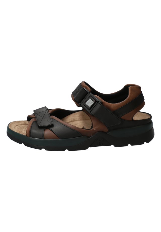 SHARK FIT - Walking sandals - dark brown