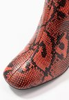 Miss Selfridge - OVAL - High heeled boots - brown/red