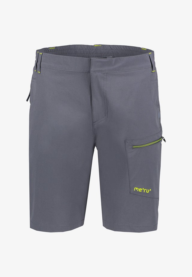 HAVELOCK - Outdoor shorts - grau