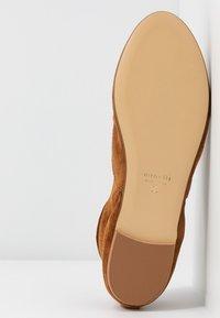 Minelli - Oksfordki - brown - 6