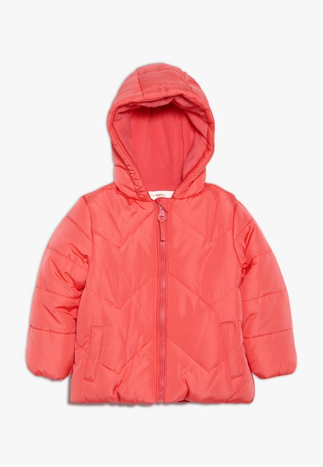 BABY FLOW JACKET PLAIN - Winterjacke - coral