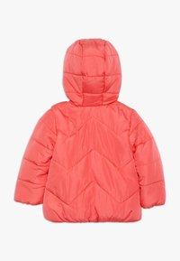mothercare - BABY FLOW JACKET PLAIN - Zimní bunda - coral - 1