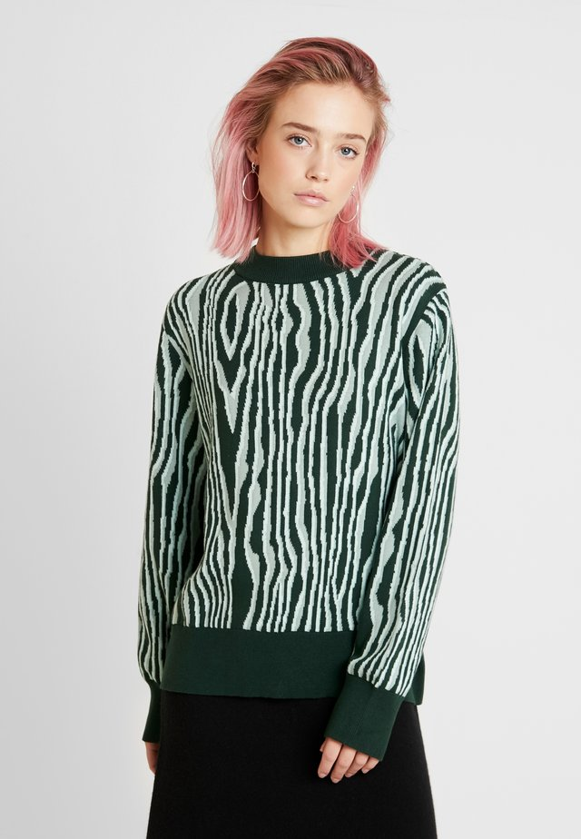 AMBIDEXTRA EXCLUSIVE COLOURS - Sweter - green