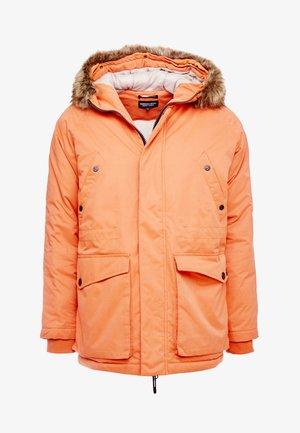 ALTITUDE - Veste d'hiver - burnt orange