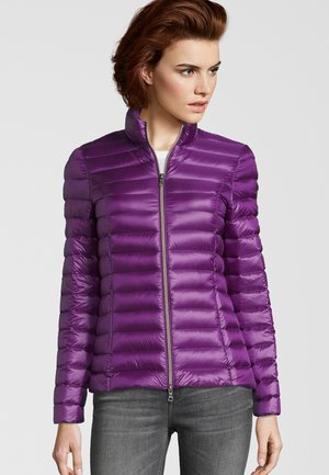 COMO - Down jacket - purple