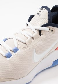 Nike Performance - AIR MAX WILDCARD CLAY - Clay court tennis shoes - light orewood brown/white/royal pulse - 5