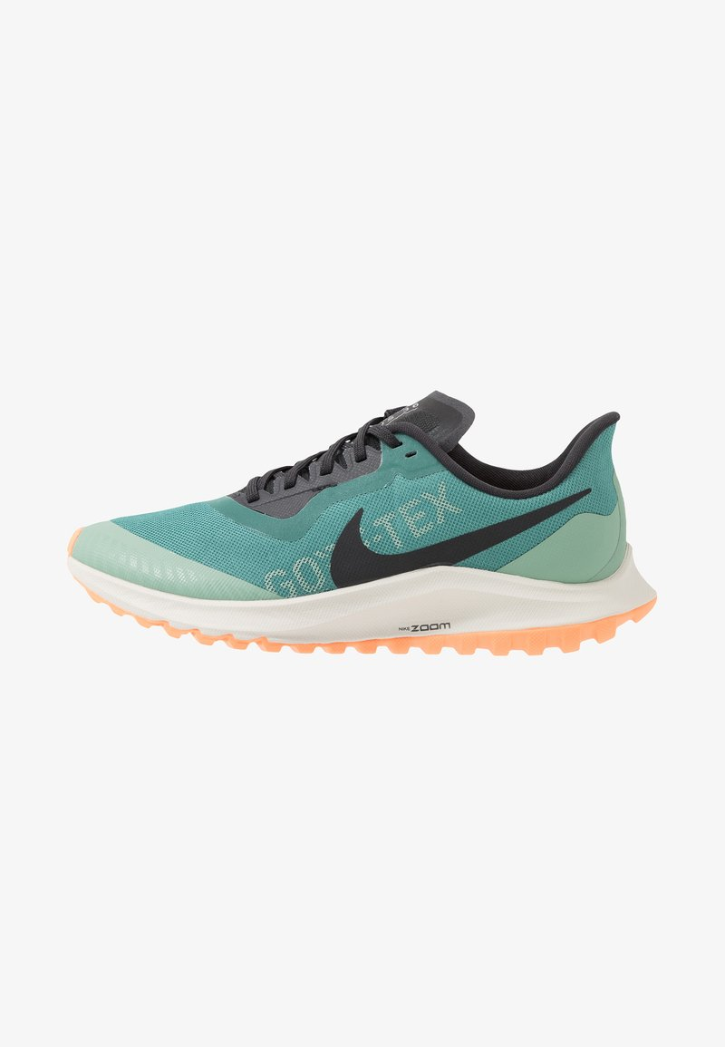 Nike Performance - ZOOM PEGASUS 36 TRAIL GTX - Běžecké boty do terénu - bicoastal/off noir/silver pine