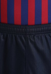Nike Performance - FC BARCELONA - Träningsshorts - obsidian/university gold - 3