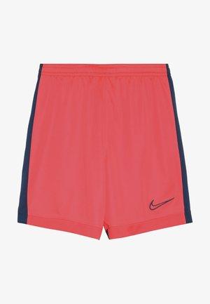 DRY ACADEMY SHORT - Sports shorts - laser crimson/valerian blue
