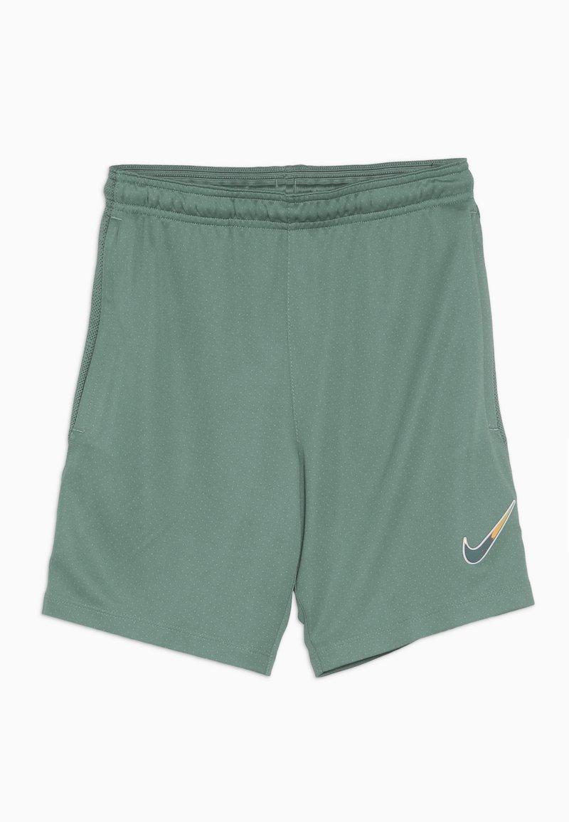 Nike Performance - DRY SHORT - Sports shorts - bicoastal/faded spruce/iridescent