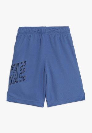 DRY SHORT - Short de sport - mountain blue