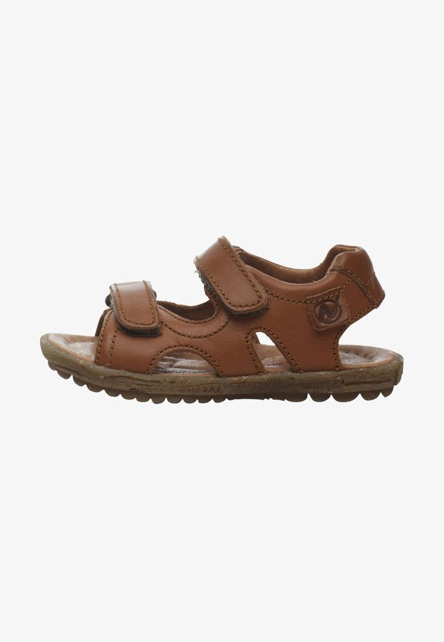 SKY - Baby shoes - brown