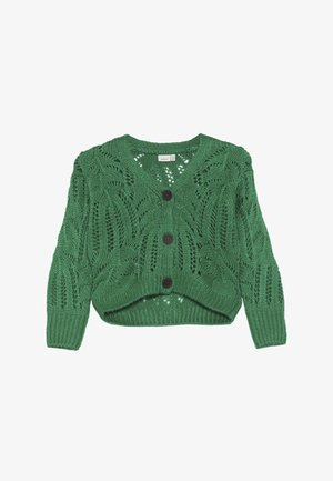 NKFLUJA - Strickjacke - jolly green